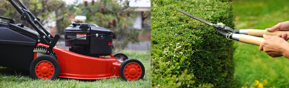 2NB Gardening Lawn Care Services